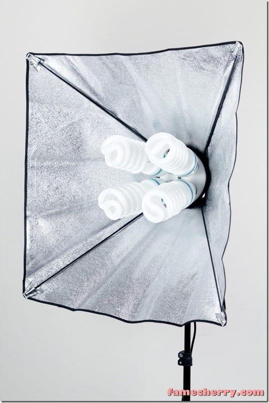 Illuminator 5500K Continuous Light With Lights