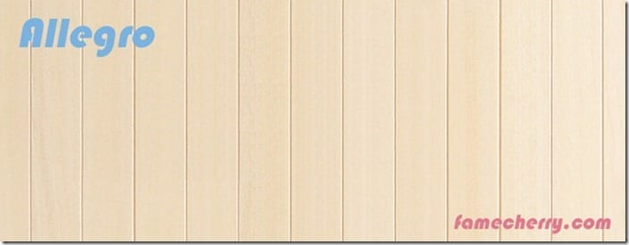 allegro wooden background 6