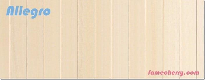 allegro wooden background 6