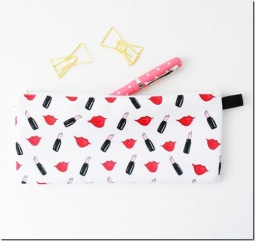 lips-lipstick-makeup-case