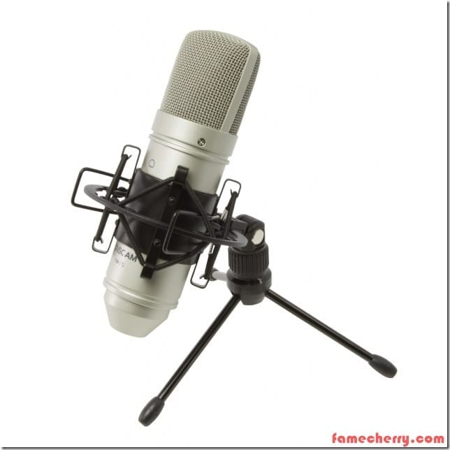 Tascam TM 80 Condenser Microphone Malaysia