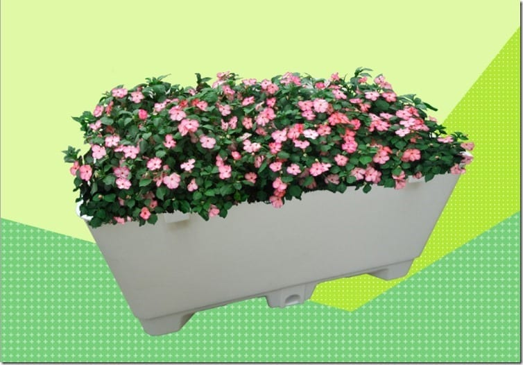 Advanced Modern Water Reserve Vegetable Pot Malaysia